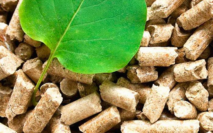 Energija iz biomase – prilika za poljoprivrednike