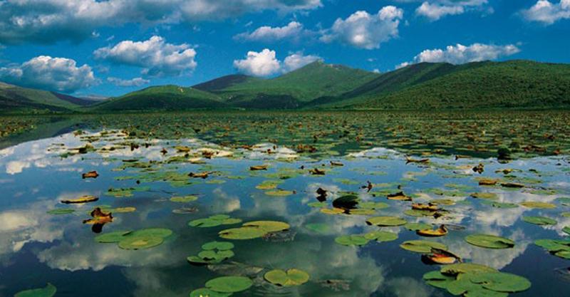 WWF Adria: Potrebno zaštiti vlažna staništa