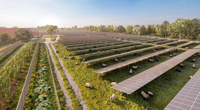 """Wien Energie"": Rekordna ekspanzija solarne energije"