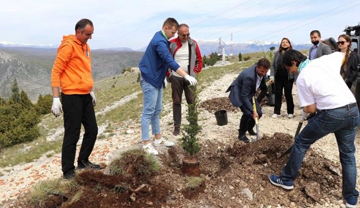 Na Fortici posađeno prvih deset od hiljadu planiranih stabala