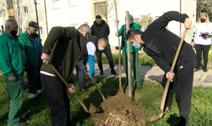 U ekološkoj akciji 'Čista i lijepa Vogošća' zasađeno 1.100 sadnica
